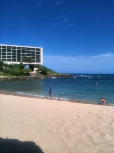 royal-hawaiian-and-turtle-bay-2091